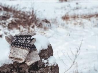 Релігійна жінка у лютий мороз завела голими в ліс трьох дітей