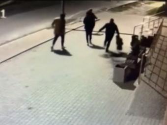 У Володимирі молодик, який вкрав тую біля магазину, вибачився та компенсував збитки