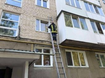 У Володимирі рятувальники знищили рій диких бджіл, які оселилися на стіні багатоповерхівки