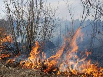 У квітні 32 жителя Володимир-Волинського району порушили екологічне законодавство