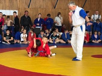 Спортсмени з Володимира здобули перемогу на турнірі з самбо