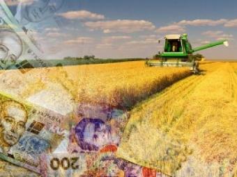Україна залишається в п'ятірці найбільших експортерів сільськогосподарської продукції до ЄС