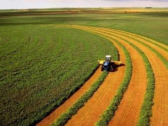 Ринок землі працює. Скільки коштує гектар і як продати землю?