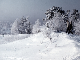 Синоптики прогнозують прихід морозів в Україну