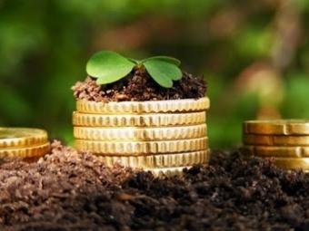 Місцеві громади Волині торік отримали на 2,2 відсотка більше плати за землю