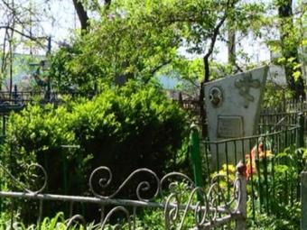 На Волині жінка крала самшит з кладовища