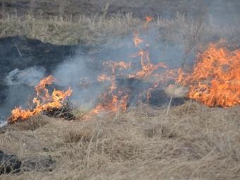 В Устилузькій громаді загасили горіння сухої трави