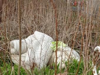 У Володимирі кладовище у центрі міста перетворили на сміттєзвалище