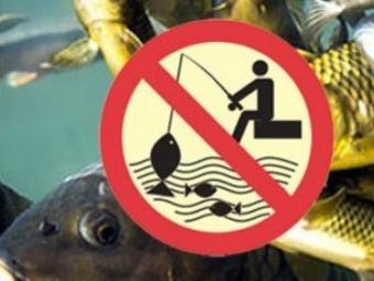 На Волині з квітня вступає в силу заборона на вилов риби