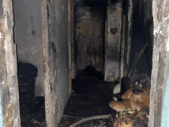 У Володимирі вночі через пожежу евакуйовували мешканців багатоповерхівки