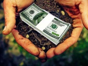 Стало відомо, скільки землі вже продали українці