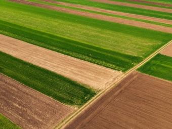 У Володимир-Волинському районі державі повернули земельну ділянку вартістю 26 мільйнів гривень