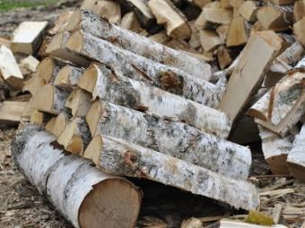 На Волині шахраї продають неіснуючі дрова