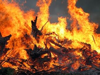До жителів Володимир-Волинської громади звернулись із закликом не спалювати сухостій