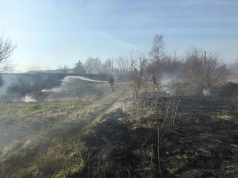 Волинь палає: невстановлені особи створюють пожежі в екосистемах