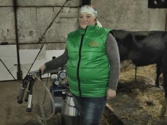 В Устилузькій громаді власникам молочної ферми немає де випасати корів