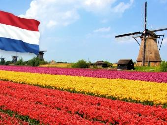 Нідерланди дозволили в'їзд вакцинованих українців