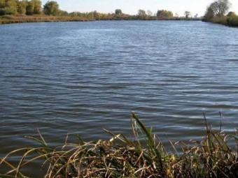 Волинянина покарали за незаконно викопаний ставок