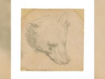 Крихітний малюнок Леонардо да Вінчі продали за 12 мільйонів доларів