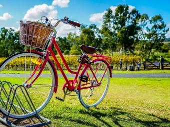 Місцевий підприємець і активіст пропонує об'єднати все місто велодоріжками