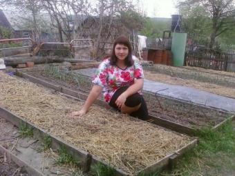 Три методи перевірки насіння на схожість